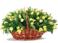 Живые цветы оптом г.омск где в кирове можно купить цветы ночью
