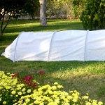 Как сэкономить на теплице, но при этом вырастить хороший урожай?