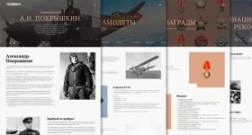 На официальном сайте аэропорта Толмачево представили раздел «Великие имена. А.И. Покрышкин»