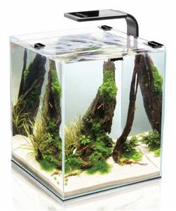 Аквариум Aquael Shrimp SET Smart LED Plant ll 10 / черный (10 л)