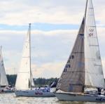 Парусные гонки в Бердском заливе