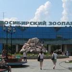 Новосибирск отметит 70-летие главной достопримечательности города – зоопарка
